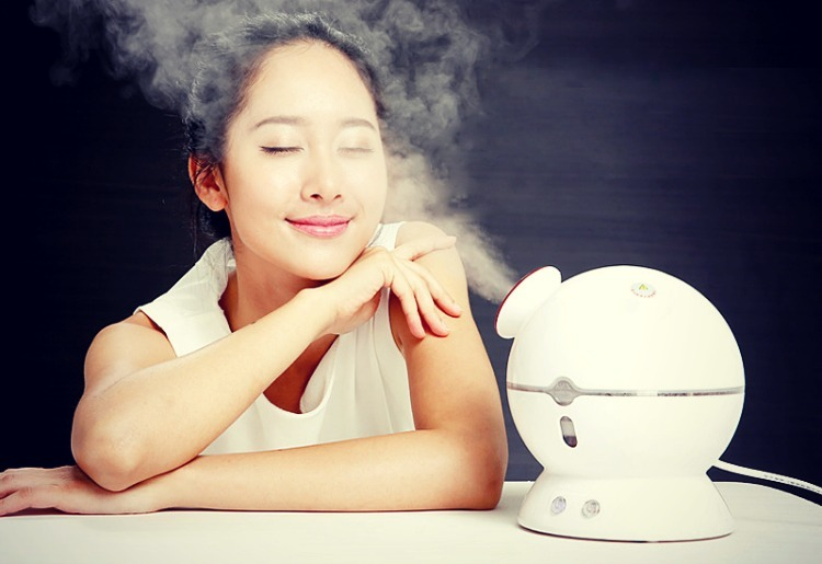 A Quick Guide To Facial Steamer Maintenance