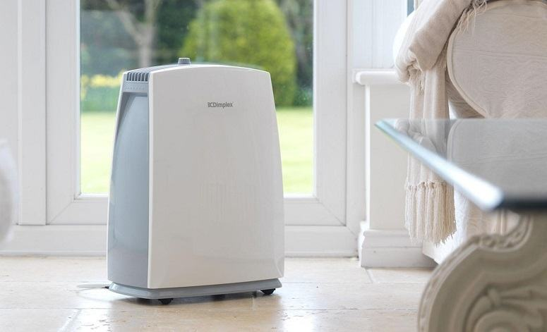 Portable Dehumidifier In Home